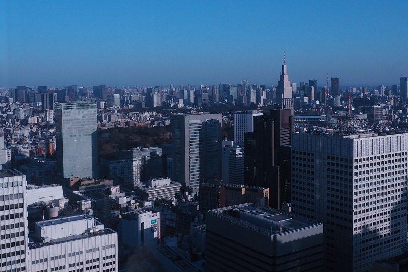 東京都庁北展望室から見る