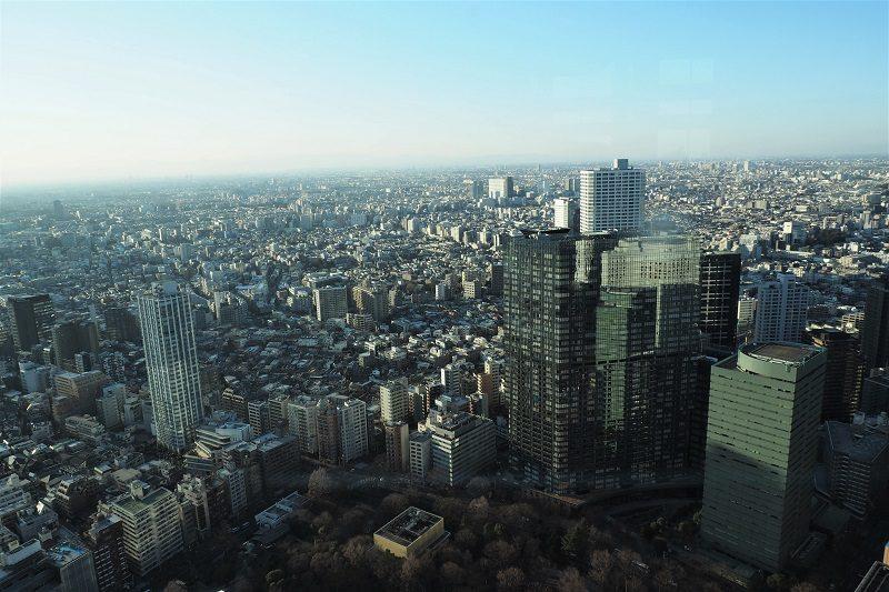 東京都庁北展望室から見る新宿中央公園