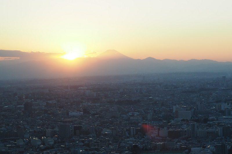 東京都庁北展望室から見る夕陽