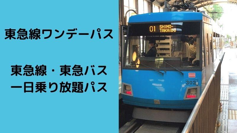 東急線ワンデーパスと東急線・東急バス 一日乗り放題パス