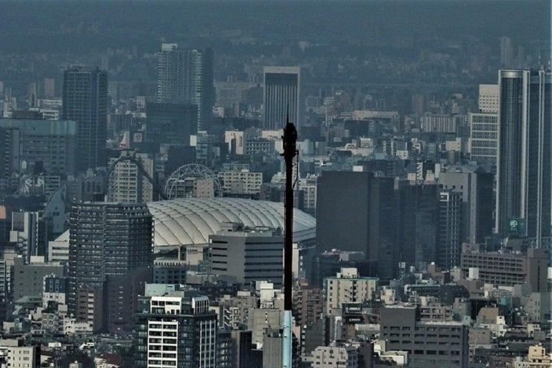東京都庁から見る東京ドーム