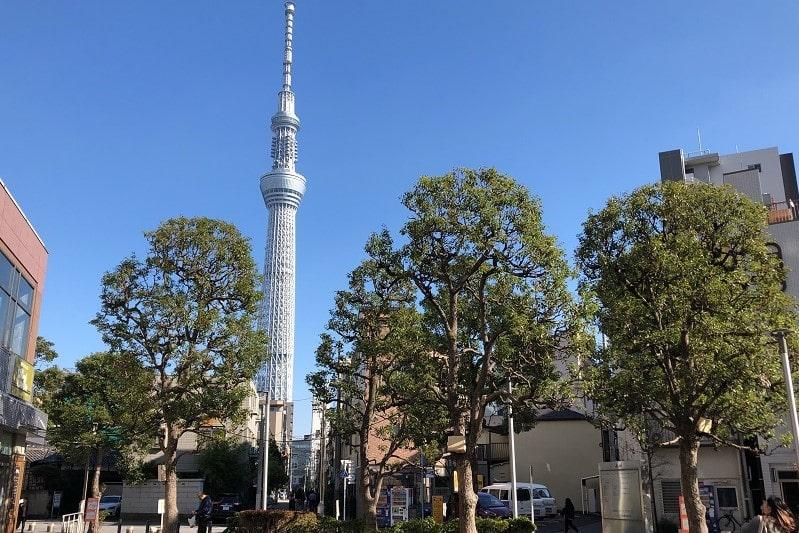 浅草通りから見る東京スカイツリー