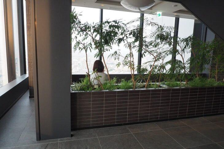 東京スカイツリーイーストタワー 30階展望スペース