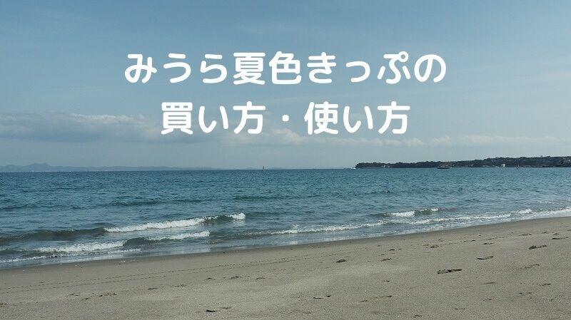 みうら夏色きっぷ